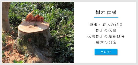 樹木の伐採・伐根